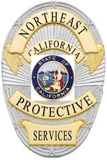 northeast protective services